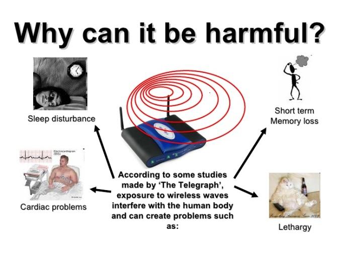 wifi-and-mobile-phone-health-risks-gaby-gerardo-javier-10-728